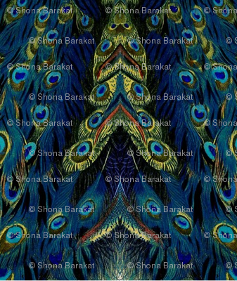 peacock_feather