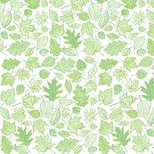 R0_leaf_etchings-sf0063_shop_thumb