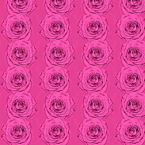 Blooming Roses in a Line fabric by captiveinflorida on Spoonflower - custom fabric