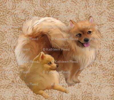 Pomeranians fabric