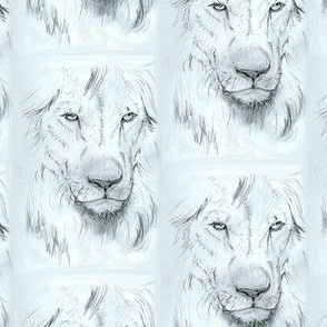 Lion portrait monochrome