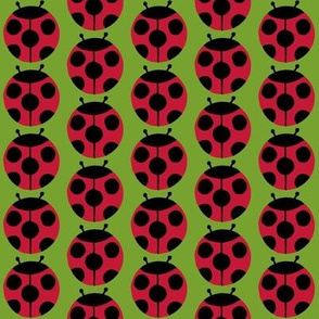 ladybugs green