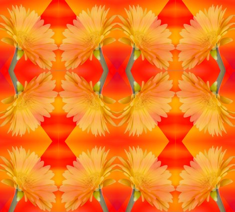 Rrryellow_gerbera_on_orange_shop_preview