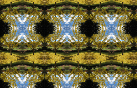 Ginko tree, Japanese gardens Toowoomba. fabric by itsjustgreat on Spoonflower - custom fabric