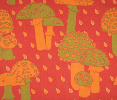 Rtoadstool_autumn2_comment_129696_preview