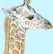 Rrrrmetrozoo_baby_giraffe_shop_thumb