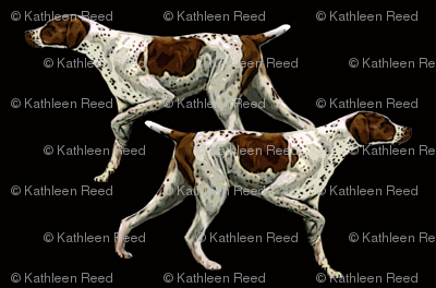 German Shorthair Pointer fabric