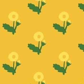 dandelion on orange