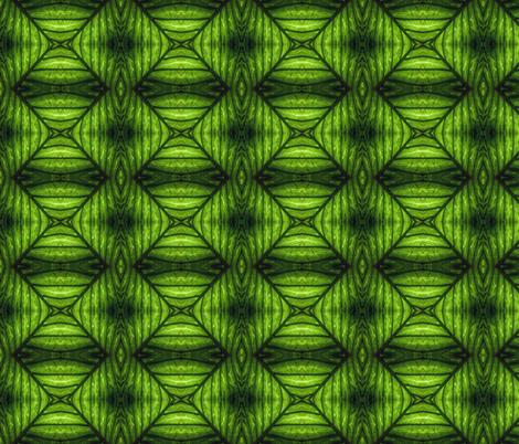 Palm Leaf fabric by glennis on Spoonflower - custom fabric