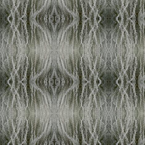 lavendarLOW_MG_0853 fabric by glennis on Spoonflower - custom fabric