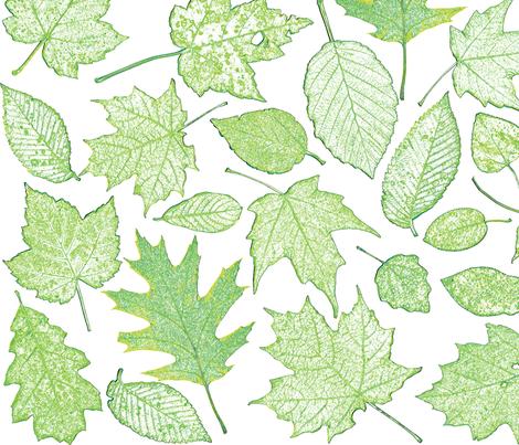 leaf etchings in green fabric by weavingmajor on Spoonflower - custom fabric