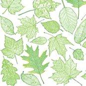 Rr0_leaf_etchings-sf0063_shop_thumb