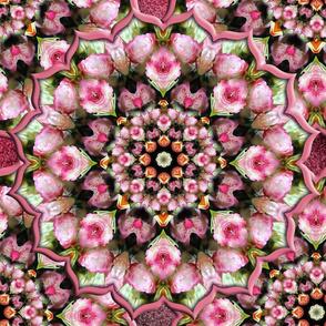 Pink Tea Rose Kaleidoscope Fabric