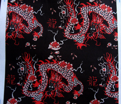 Year of the Dragon #5