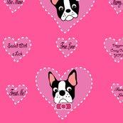 Rrrboston_valentine_ed_ed_shop_thumb