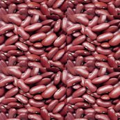 Rrred-beans_shop_thumb