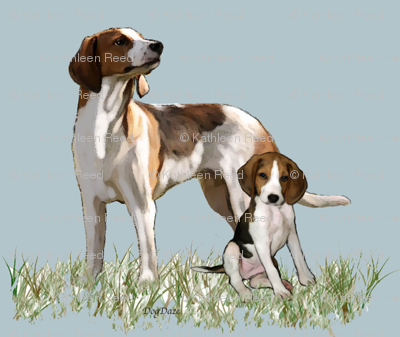 treeing walker coonhounds Mother and puppy