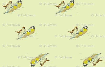 Chickadee Spring