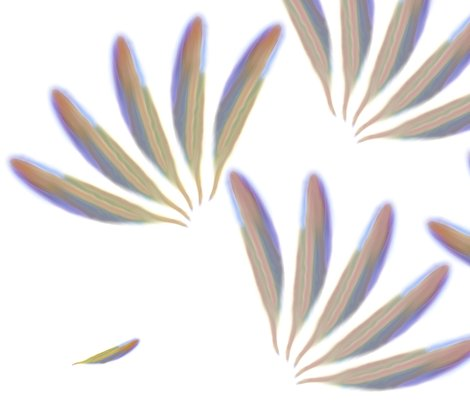 Rrrrrfeathers_for_spoonflower_shop_preview