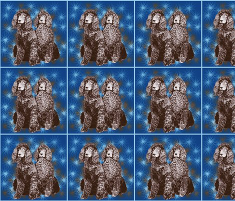 Rrrirish_water_spaniel2_shop_preview