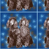 Rrrirish_water_spaniel2_shop_thumb