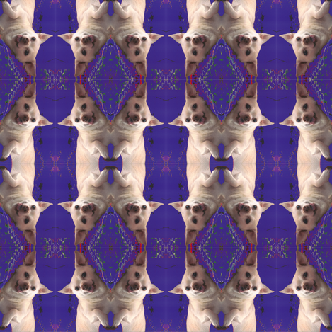 pughuahua fabric by purplenylon on Spoonflower - custom fabric