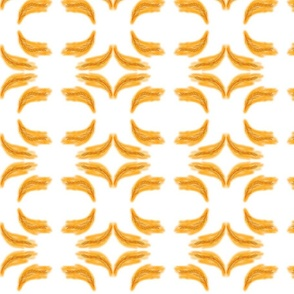 orange_feathers