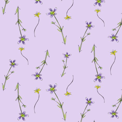 Rrlavender_purple_flowers_shop_preview