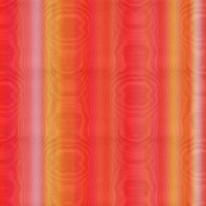 Aramantha Moire Stripe