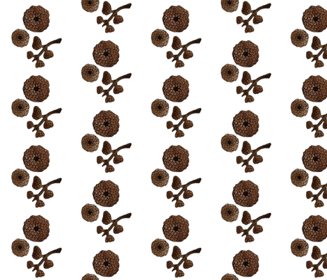 Giant Acorn Caps fabric by gollybard on Spoonflower - custom fabric