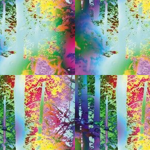 Rainbow Forest, S