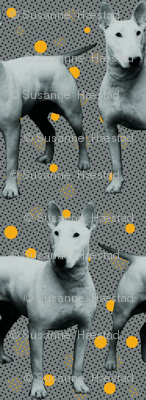Marley dogs white yellow dots