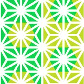 Asa_bright_green_shop_thumb