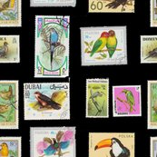 Rrrbird_stamp_pattern_black_shop_thumb