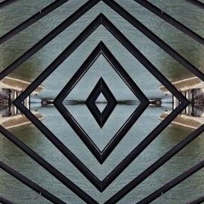 Bird along the Seine, Paris