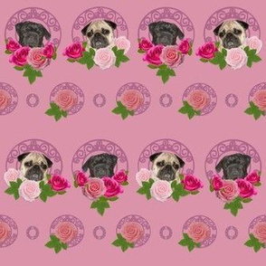 pugs and roses pink