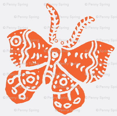 Tangerine Butterfly on White