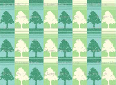 evergreen_copy
