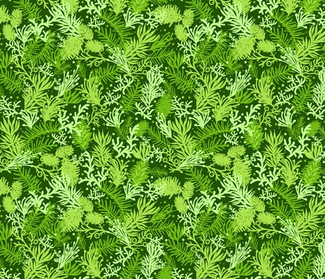 Rrrevergreens_seamless_pattern_sf_shop_preview