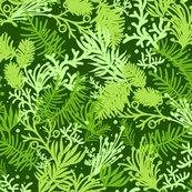 Rrrevergreens_seamless_pattern_sf_shop_thumb