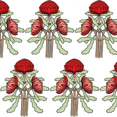 Waratahs by Su_G fabric by su_g on Spoonflower - custom fabric