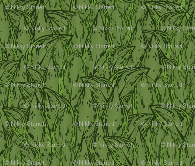 Evergreen2011