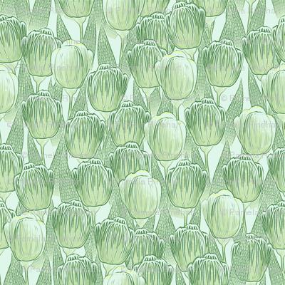green grow the tulips