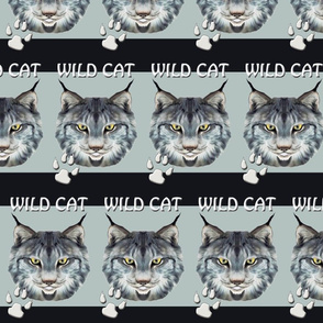 WILDCAT_ONE