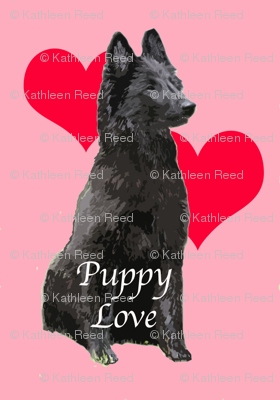 Puppy Love Belgian Sheepdog
