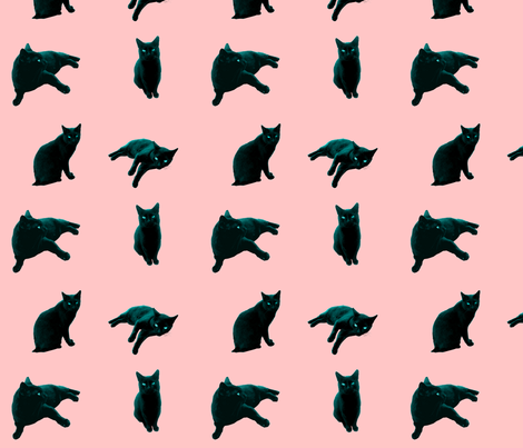 Cotton Candy Cat fabric by pond_ripple on Spoonflower - custom fabric