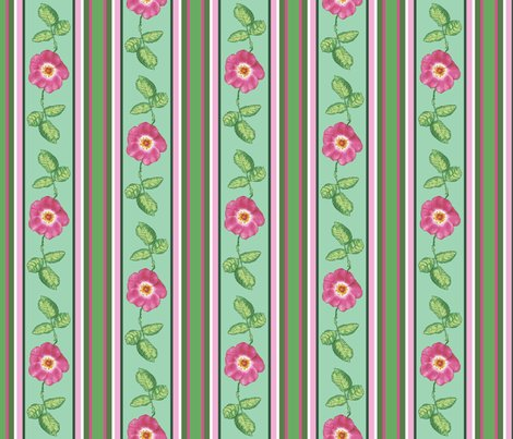 Rrrose_stripe_alternating_single_repeat_shop_preview