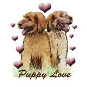 Rrrbriard_puppy_love_shop_thumb