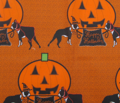 Rrrhalloween_2_card_comment_136365_preview