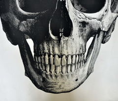 Rrrrrrrrrrskull_comment_188682_preview